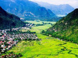 Đi du lịch Mai Châu vào tháng 6 du khách sẽ được ngắm nhìn vẻ đẹp dân dã của những bông hoa rừng Tây Bắc