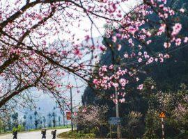 Du lịch Mai Châu tháng 1 có nhiều cảnh đẹp tuyệt vời