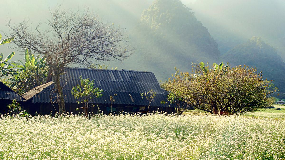 Đi Mai Châu vào mùa nào đẹp nhất như ý?