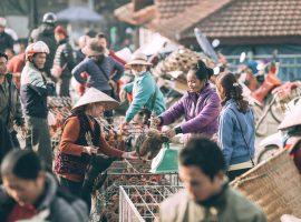 Cảnh họp chợ phiên nhộn nhịp tại trung tâm xã Lũng Vân