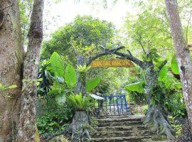 khu du lịch sinh thái Khoang Xanh Suối Tiên